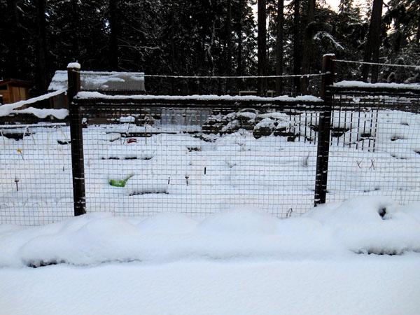 snowfall4 on gabriola